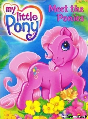 встреча с пони